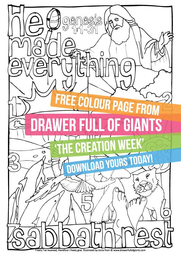 Creation Week - A free downloadable colouring page from drawerfullofgiants.com