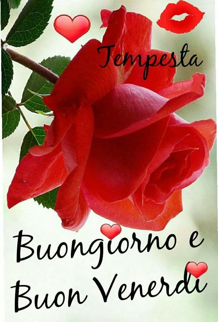 Frasi buongiorno e buon weekend ff38 regardsdefemmes for Immagini divertenti buongiorno venerdi