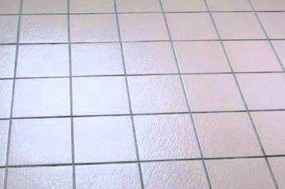 Best 25 Non Slip Floor Tiles Ideas On Pinterest Paw Pad