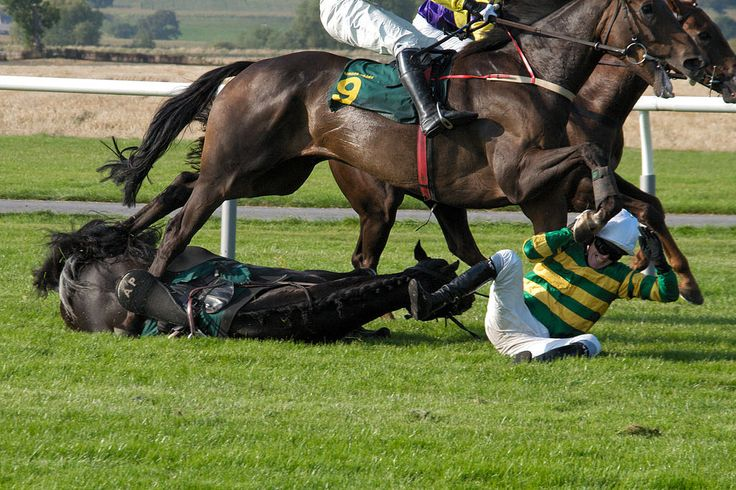 Four horses have died in the first two days of the Grand National horse race. Demand that this cruel event is banned immediately, along with horse racing in general.