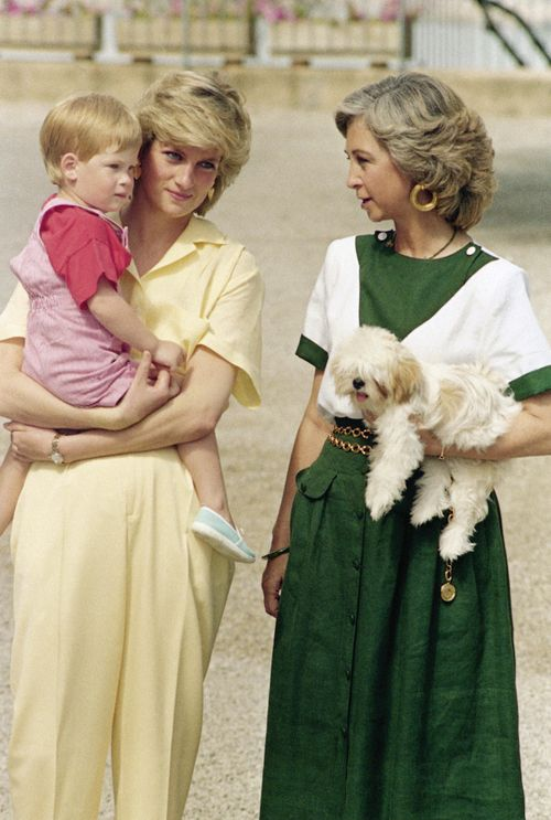 Princess Diana and Prince Harry with Queen Sofia of Spain