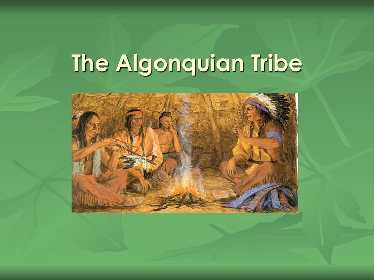 Milton School - yz Webquest Algon/Iroq Home Page