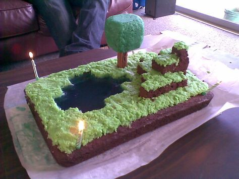 I made a Minecraft birthday cake.... - GP Forums Food & Cooking