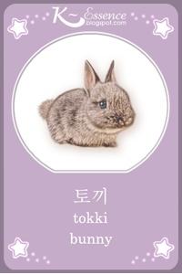 ☆ Bunny Flashcard ☆    Hangul ~ 토끼 ☆  Romanized Korean ~ tokki ☆   #vocabulary #illustration