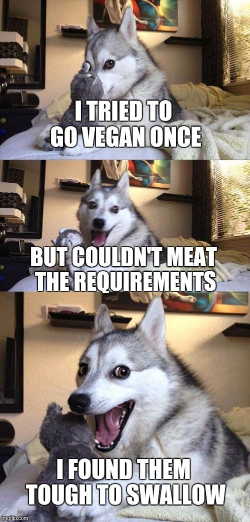 Bad Pun Dog | I TRIED TO GO VEGAN ONCE BUT COULDN'T MEAT THE REQUIREMENTS I FOUND THEM TOUGH TO SWALLOW | image tagged in memes,bad pun dog | made w/ Imgflip meme maker