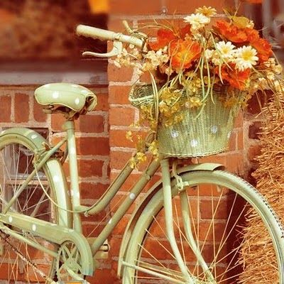 darling vintage polka dot bike