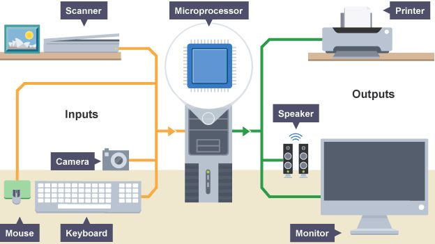 Diagram Of Various Input And Output Devices Computer