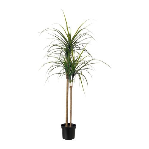 FEJKA Artificial potted plant IKEA Lifelike artificial plant that remains looking fresh year after year.