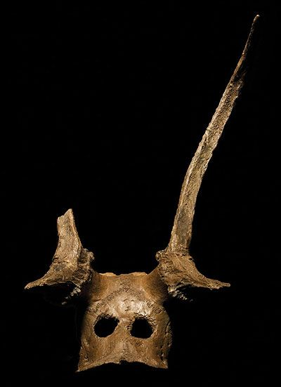 Red Deer Headdress  Mesolithic, around 8500 BC. Star Carr, Yorkshire, England   Excavated by Grahame Clark, MAA 1953.61