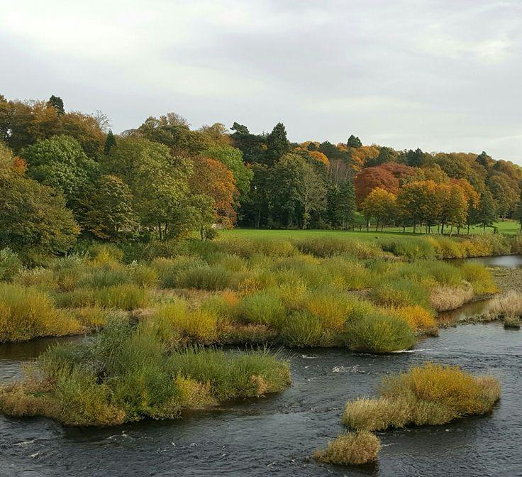 River Tyne from Corbridge bridge Autumn