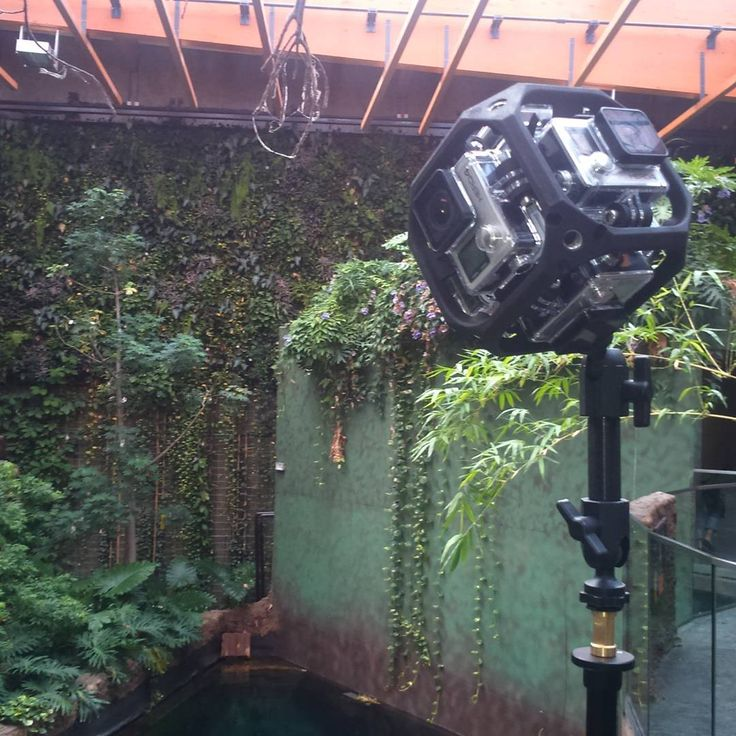 Our #gopro #vr #rig #working at the #amazing #afrykarium in #wroclaw #poland. #nature #tropical #flora