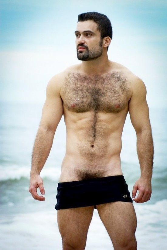 Arab Stud Gay 39