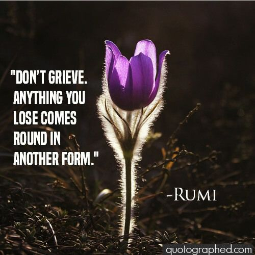"""A Quote on Life and Karma by Rumi - """"Don't grieve. Anything you lose comes round in another form."""""""