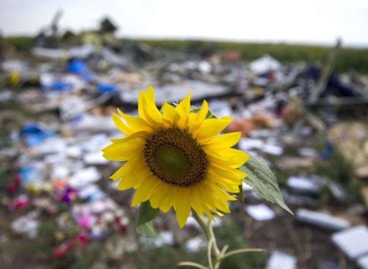 De plek waar vlucht MH17 neerstortte