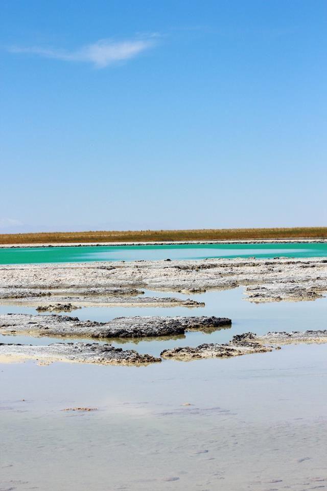 Laguna Cejar San Pedro de Atacama  foto por Elisa Reyes #travel #trip #chile #sanpedro
