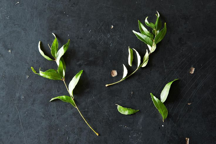 Curry Leaves and Your Favorite Ways to Use Them on Food52: http://food52.com/blog/9821-curry-leaves-and-your-favorite-ways-to-use-them #Food52