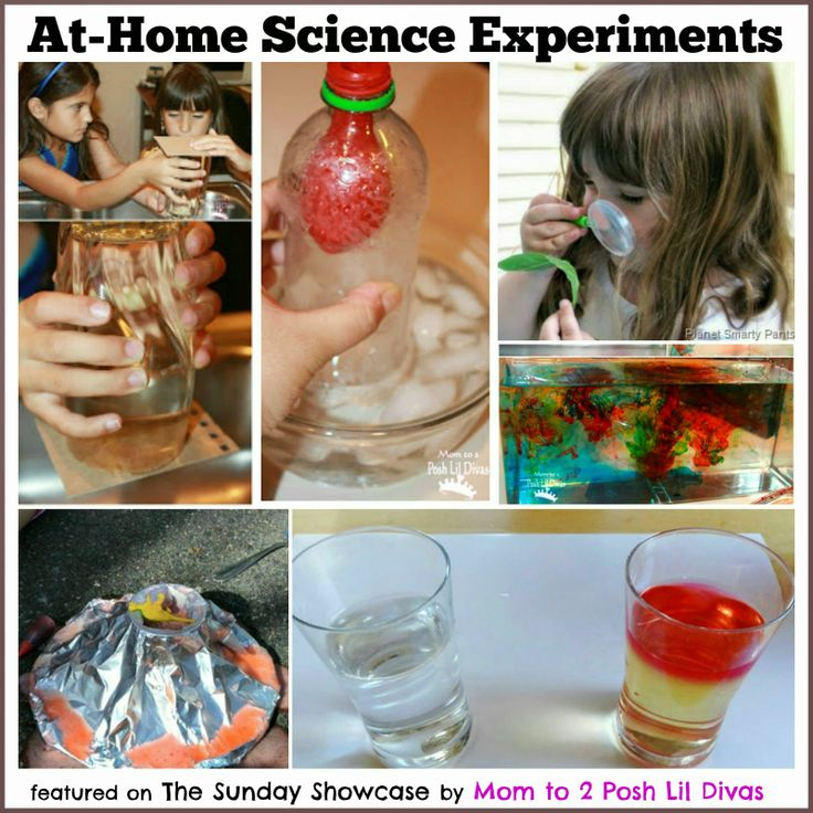Best At Home Science Experiments Ideas On Pinterest Science