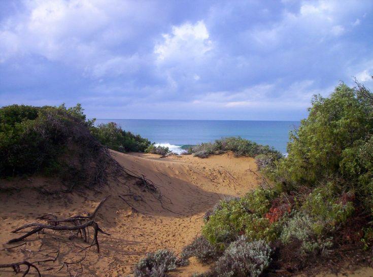Estate nei parchi 2015 - Parchi e aree protette - Ambiente - Cittadini - Regione Toscana