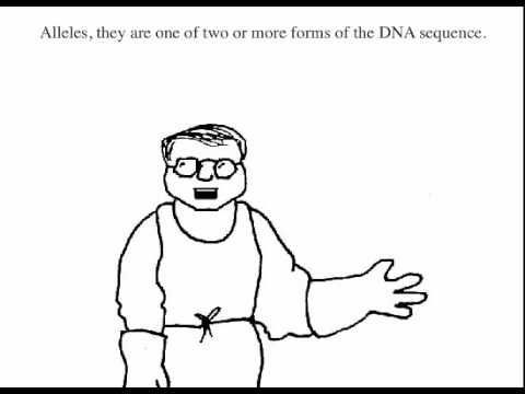 hilarious and informative video on the law of independent assortment. Good project idea for students. They can make a video description of one of Mendel's laws. #genetics #biology