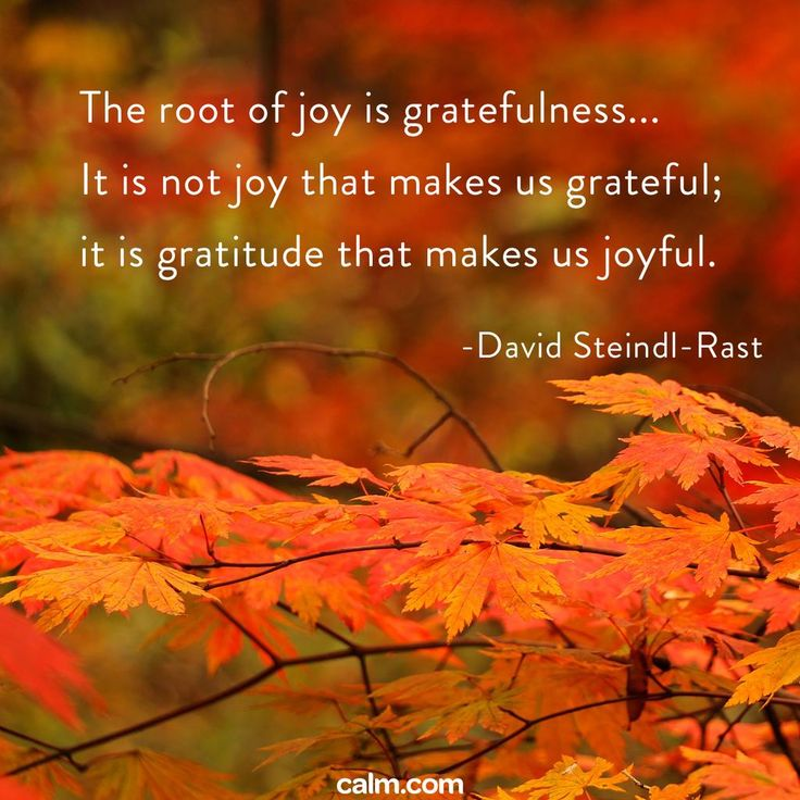Exceptional The Root Of Joy Is Gratefulness ~ It Is Not Joy That Makes Us Grateful ~ It  Is Gratitude That Makes Us Joyful   David Steindl Rast ⊰♡⊱