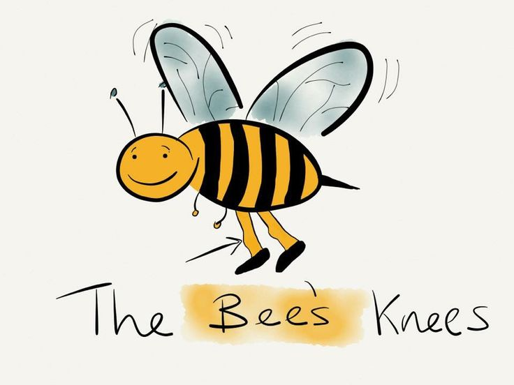 The bees knees illustration by A. Nicholson-Ward | Mildly ...