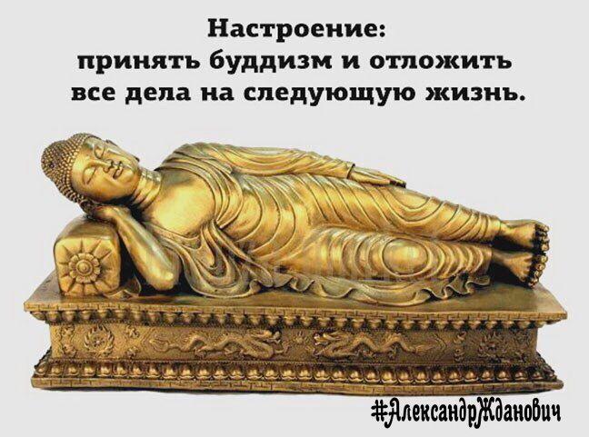 #АлександрЖданович #прикольныекартинки #подкофеек #позитив