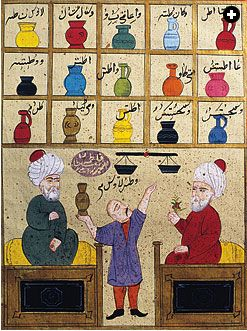 Doctors made big scientific advances in medicine during the Islamic empire. Islamic doctors began by collecting all the medical observations and logic of Hippocrates and his followers, and Galen, combined with the work of the Indian doctors Sushruta and Charaka, whose books were translated into Arabic about 750 AD.