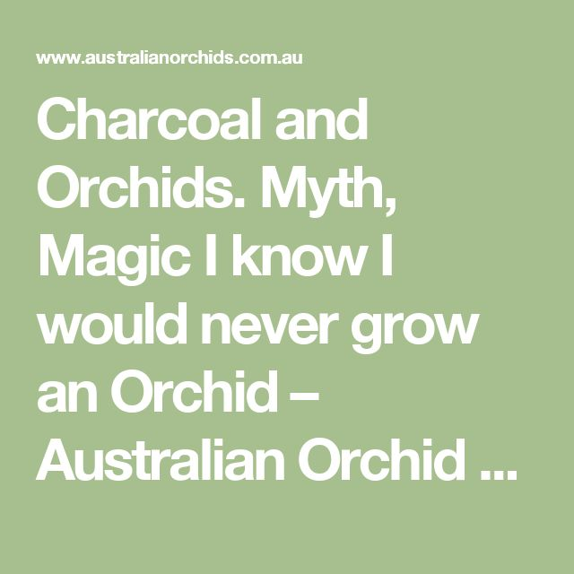 Charcoal and Orchids. Myth, Magic I know I would never grow an Orchid  – Australian Orchid Nursery