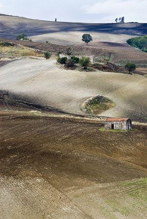 Venosa province of Potenza , region of Basilicata