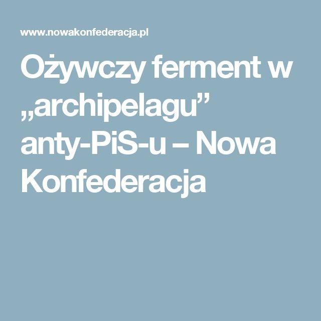 """Ożywczy ferment w """"archipelagu"""" anty-PiS-u – Nowa Konfederacja"""