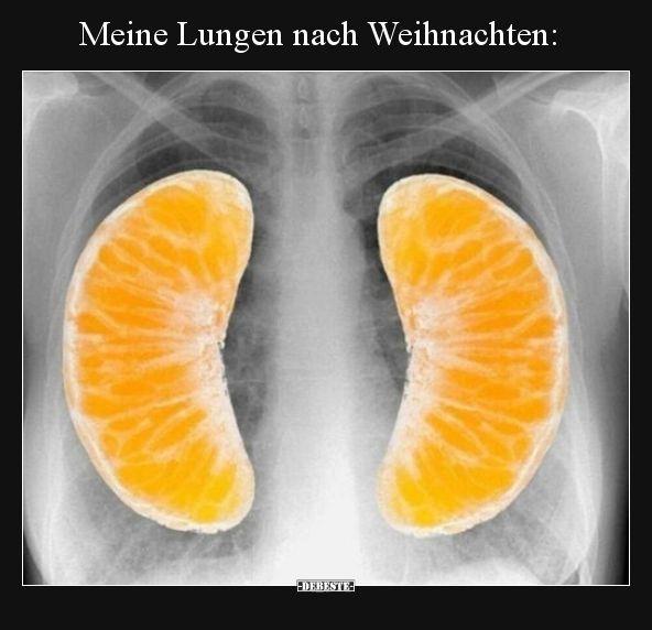 Meine Lungen nach Weihnachten.. | Lustige Bilder, Sprüche, Witze, echt lustig – Melina80