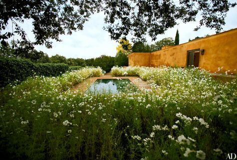 Fernando Caruncho's Famous Green Garden in Madrid | Architectural Digest