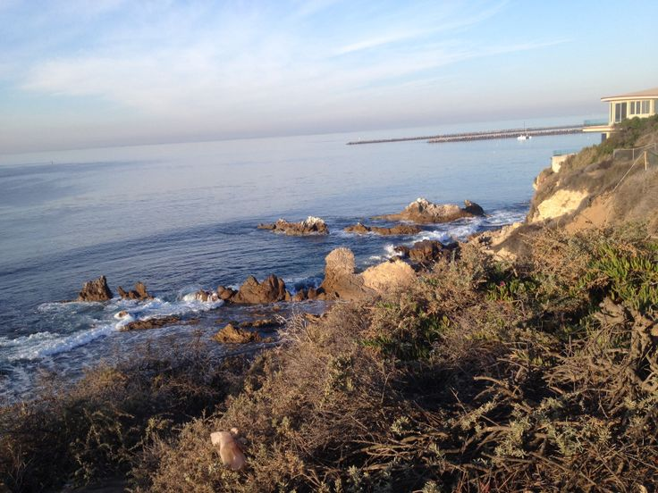 1000 images about california best surf fishing spots on for Surf fishing southern california