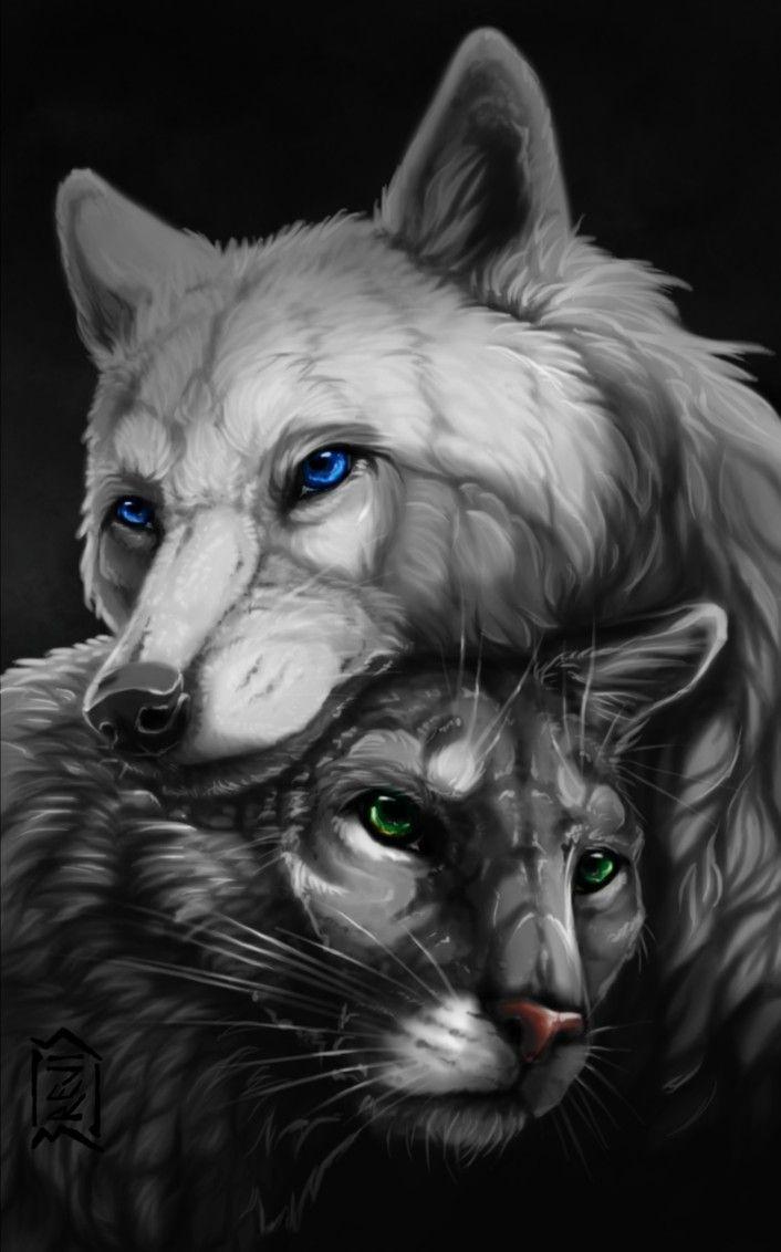 Картинка кот и волк