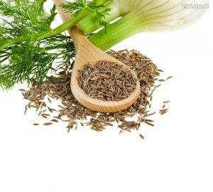 5 korenín, ktoré pomáhajú na dobré trávenie
