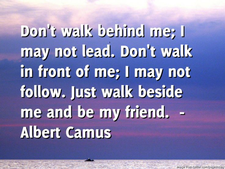 Crowns and Bridges by Oakridge Dental brings you the daily quote for Wednesday -----  Don't walk behind me; I may not lead. Don't walk in front of me; I may not follow. Just walk beside me and be my friend.  ---- by  Albert Camu