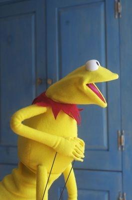 Own Kermit!