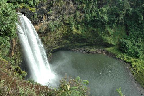"Kaua'i's waterfalls are a year-round display of nature's ability to keep the Garden Isle green and vibrant. In Lihu'e, one can drive right up to picturesque Wailua Falls. If the 80-foot waterfalls look vaguely familiar, In scenic Wailua, Opaeka'a Falls is the island's most accessible major waterfall as it cascades into a hidden pool. And it's a wonderful setting to take photos. Opaeka'a means ""rolling shrimp,"" which were once abundant in the stream."