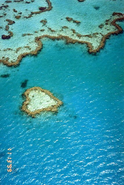 Heart reef - Great Barrier Reef from the seaplane - Queensland, Australia by Annabel Sheppey, via Flickr