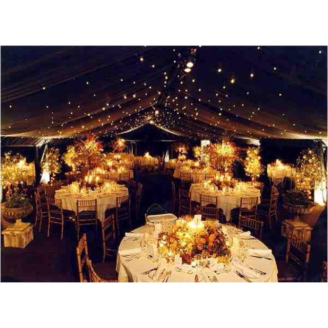 Perfect Starry Wedding Reception