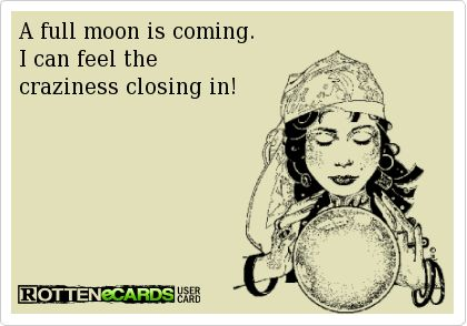 A full moon is coming.  I can feel the  craziness closing in!