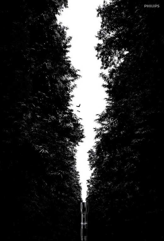 this image is an ad for a flashlight. The ground is the trees and the figure is the white part between the trees, which looks like it is the beam coming from the flashlight below. Very clever.