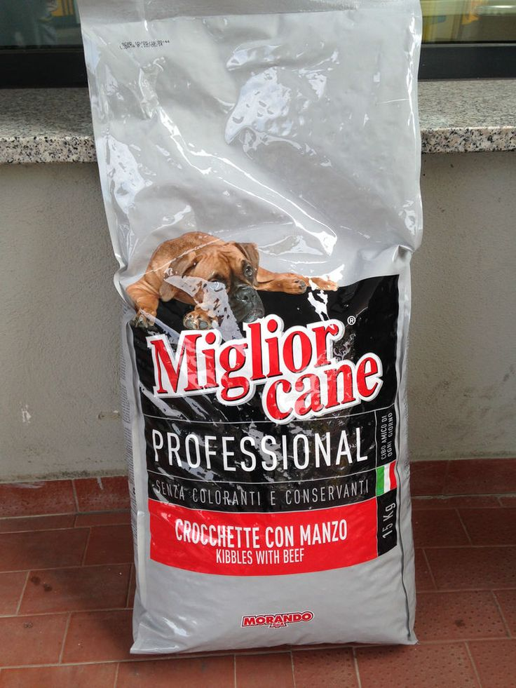 Mangime Completo Cani Adulti Miglior  Cane Professional http://www.ebay.it/itm/Mangime-Completo-Cani-Adulti-Miglior-Cane-Professional-/281460569296?pt=IT_Stanza&hash=item41885b74d0
