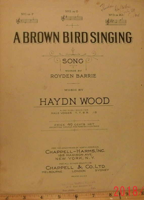 Musical Words For Singing Birds