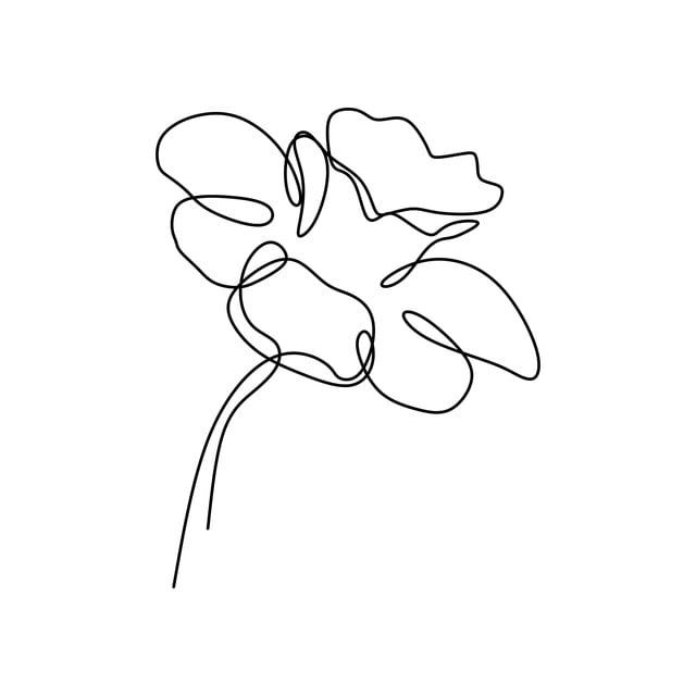 Continuous Line Art Drawing Of Flower Vector Illustration Minimalist Hand Drawn One Single Stripe Design Isolated On White Background Line Art Botany Petal Line Art Drawings Line Art Drawings