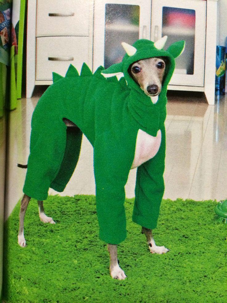 Greyhound costume | Italian greyhound costume | Pinterest