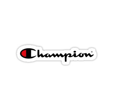 Champion Logo Sticker Aesthetic stickers, Hydroflask