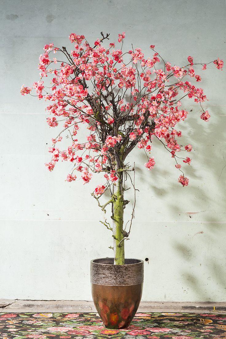 Bloesemboom van zijde met echte fruitboomstam. ROETS