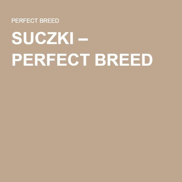 SUCZKI – PERFECT BREED