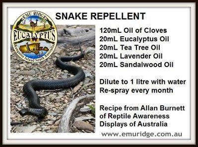 Snake repellent using essential oils...